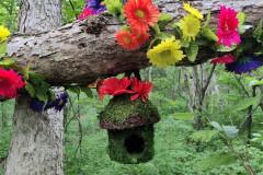 FairyForest-05.30.21.B