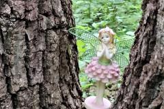 FairyForest-05.30.21
