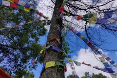 Flag-Tree-4