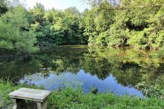 South-Pond2