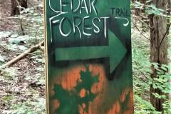 Cedar-Forest-Trial-Sign