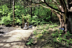 Zen-garden-1